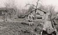 Garten im Jahr 1971