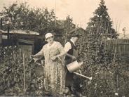 Garten unterhalb der Distelschänke, 50er Jahre