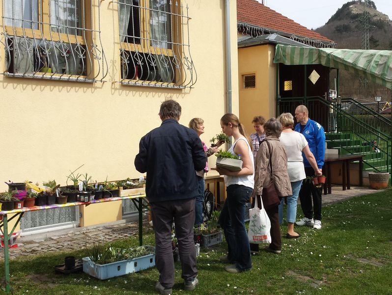 Pflanzentauschbörse am 11.04.2015