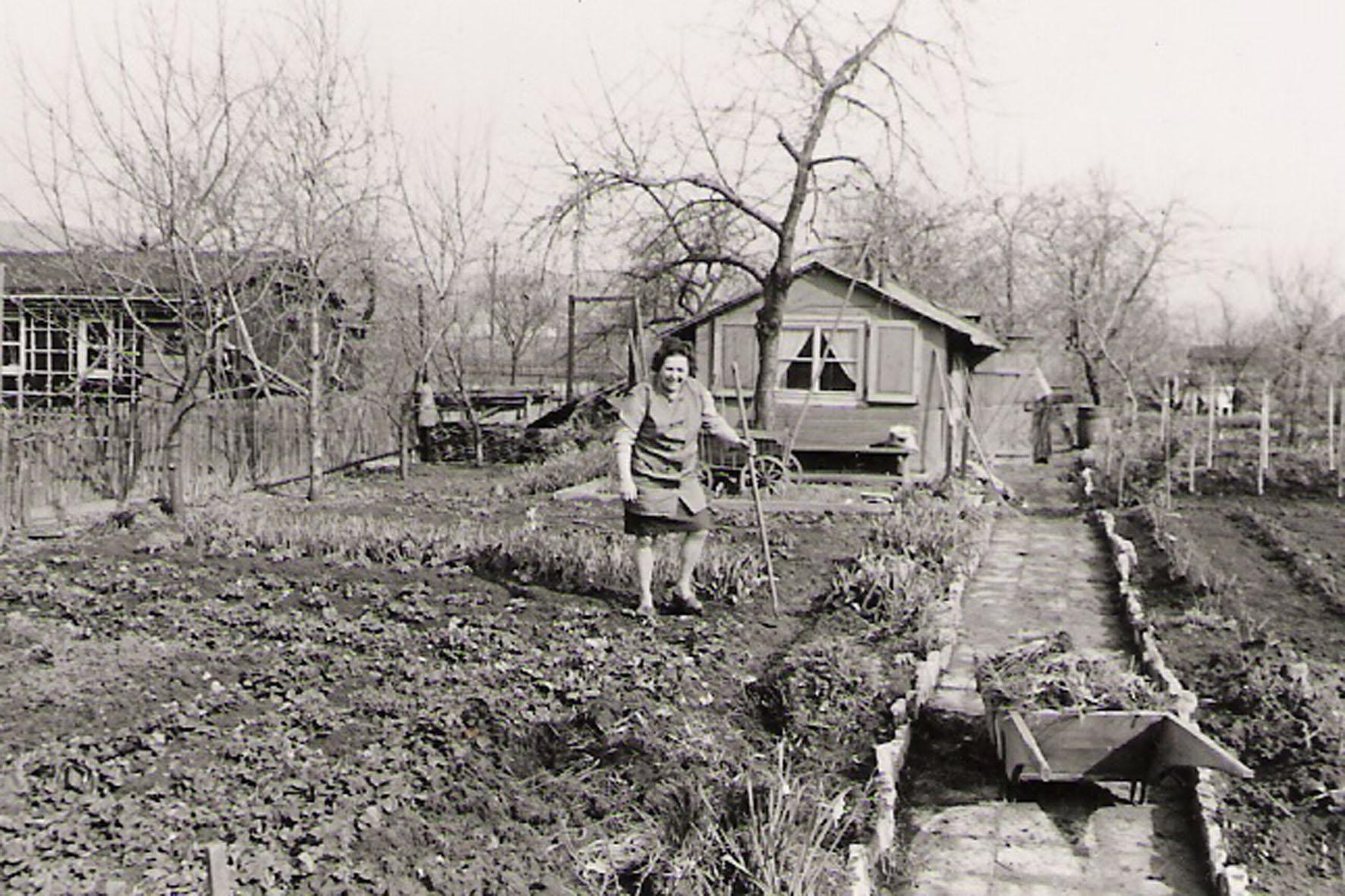 Kleingärten Anfang der 70er Jahre-2